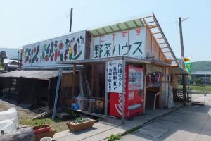 11 野菜ハウス