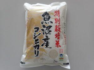 特別栽培米 魚沼産コシヒカリ