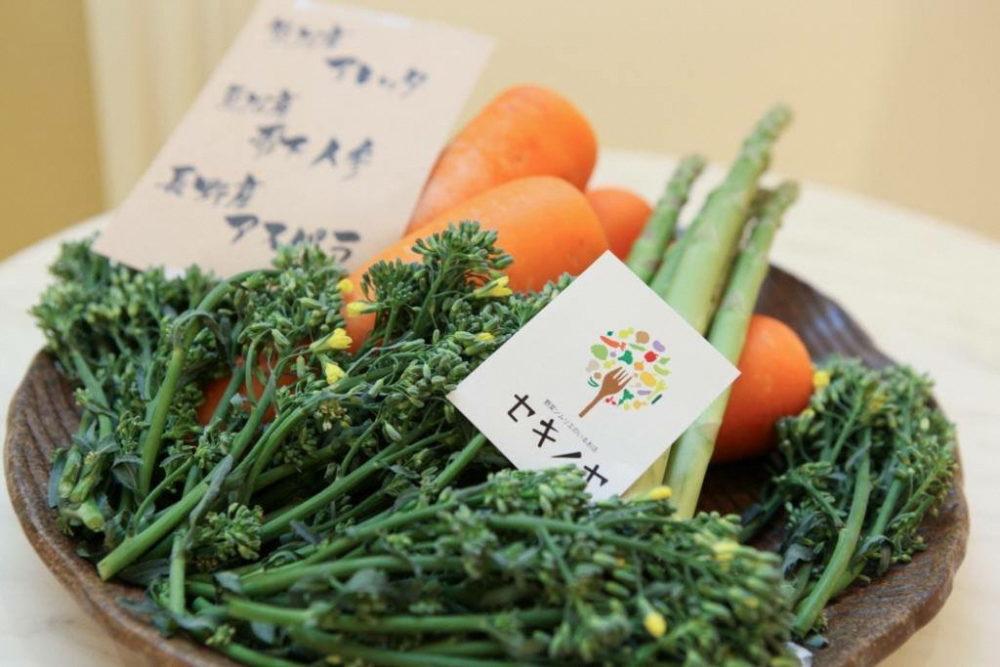 セキノヤ 野菜