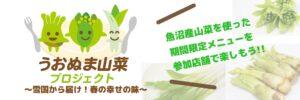 山菜プロジェクト画像