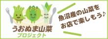 山菜プロジェクト